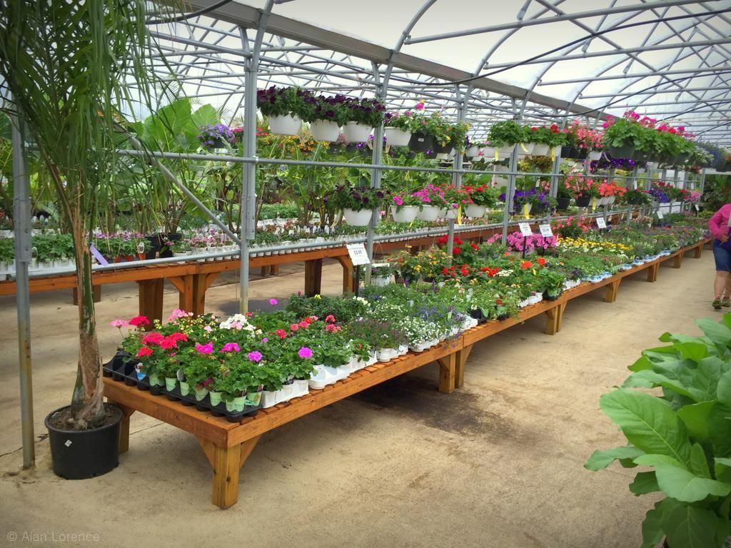 Greenscape Gardens, Part 2. U003eu003e