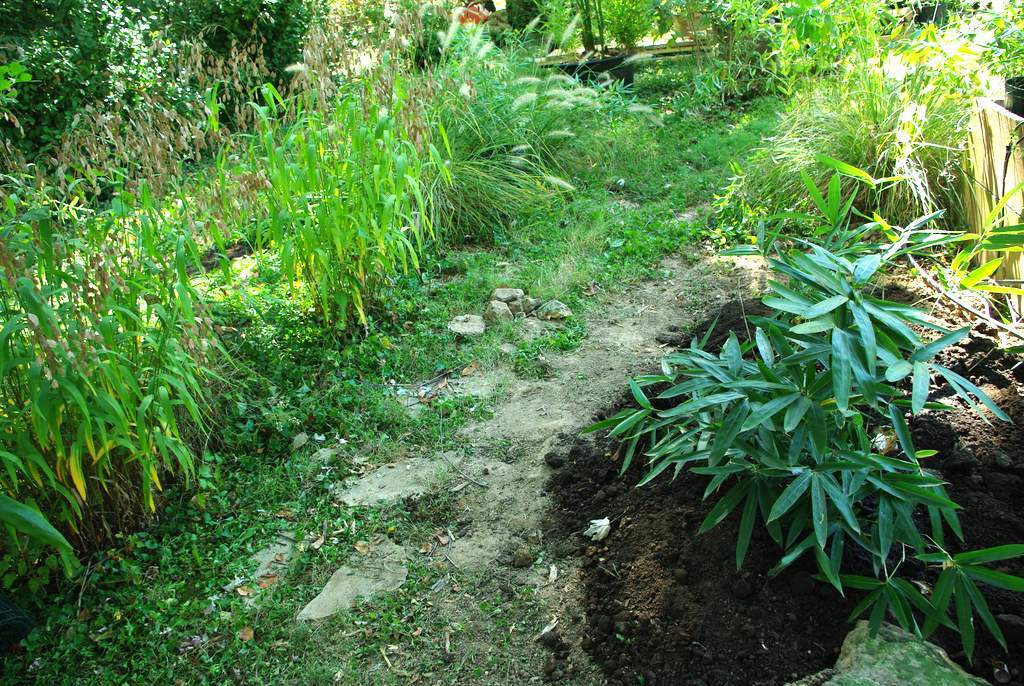 It 39 s not work it 39 s gardening back to bamboo - Gardening works in october winter preparations ...