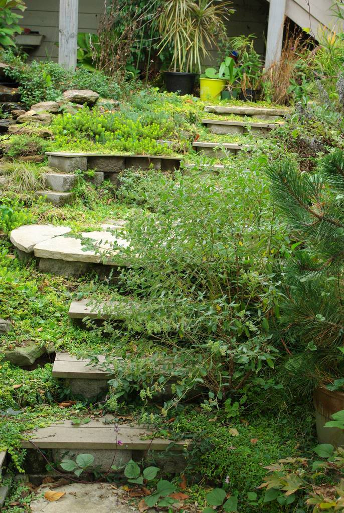 It 39 s not work it 39 s gardening stairs better when usable - Gardening works in october winter preparations ...